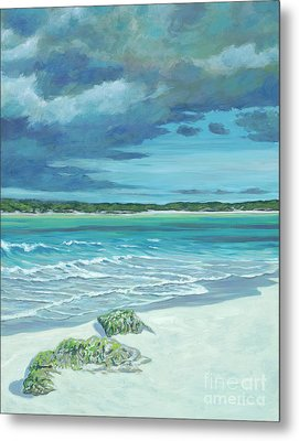 Summer Storm Metal Print by Danielle Perry