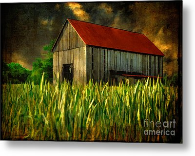 Summer Storm Metal Print by Lois Bryan