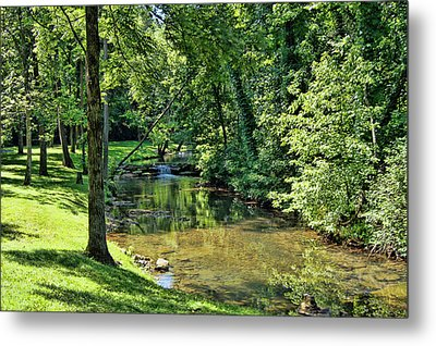 Metal Print featuring the photograph Summer Stream by Cricket Hackmann