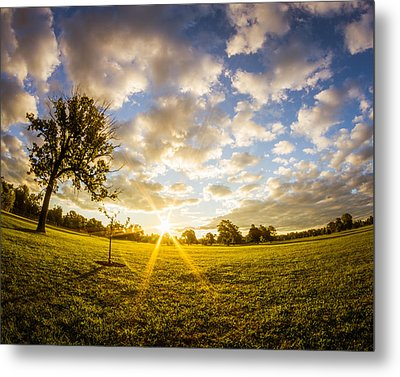 Metal Print featuring the photograph Summer Sunrise Across Delware Park Meadow by Chris Bordeleau