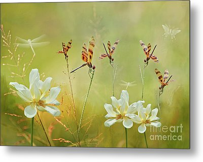 Metal Print featuring the photograph Summer Symphony by Bonnie Barry