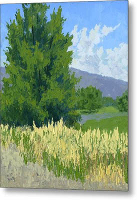 Summer Tree Metal Print by David King