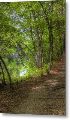 Summer Walk Metal Print