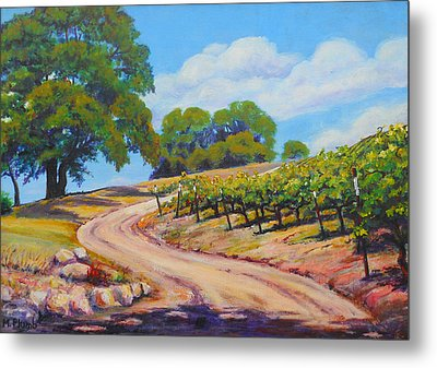 Summer Walk Metal Print by Margaret  Plumb