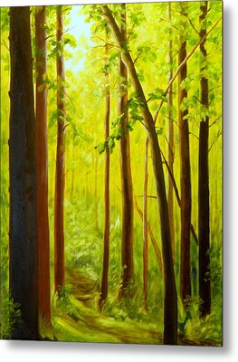 Summer Woods Metal Print
