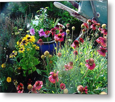 Metal Print featuring the photograph Summer's Beauty by P Maure Bausch