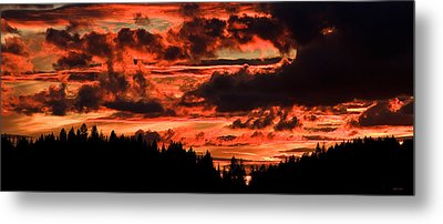 Summer's Crimson Fire Metal Print