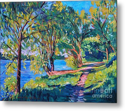 Summer's Lake Metal Print