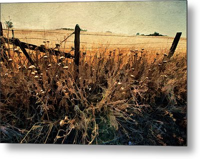 Summertime Country Fence Metal Print