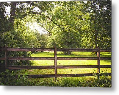 Metal Print featuring the photograph Summertime Sunshine by Shelby Young