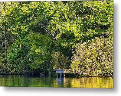 Summertime Metal Print by Swank Photography