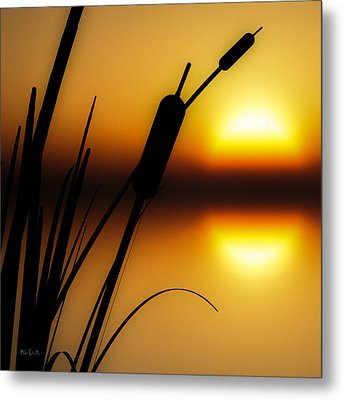 Summertime Whispers  Metal Print by Bob Orsillo