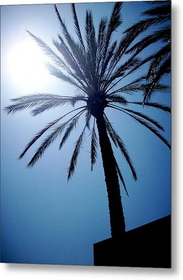 Sun And Palm Metal Print by Marina Owens