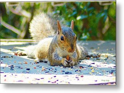 Sun Bathing Squirrel Metal Print