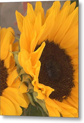 Metal Print featuring the digital art Sun Flower by Jana Russon
