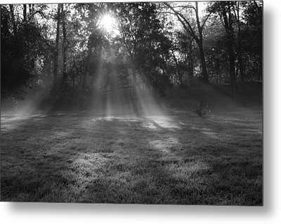 Sun Rays Though Fog Metal Print by Sven Brogren