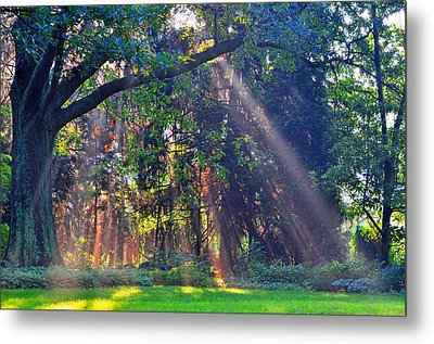 Sun Shower B Metal Print by Peter  McIntosh