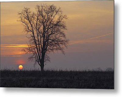 Sunday At Dawn Metal Print