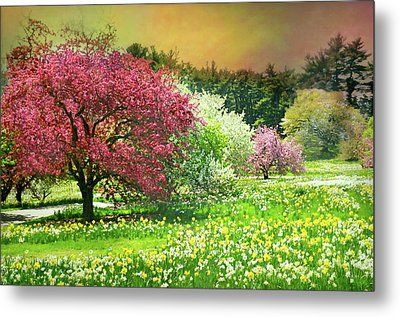 Metal Print featuring the photograph Sunday My Day by Diana Angstadt