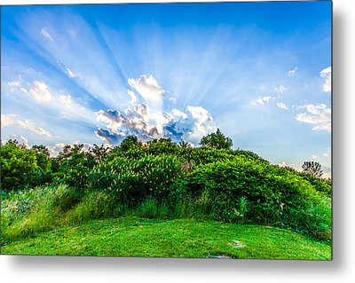 Metal Print featuring the photograph Sundown by Anthony Rego