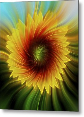 Sunflower Beams Metal Print by Terry DeLuco