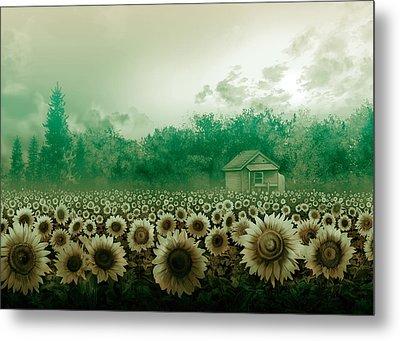 Sunflower Field Green Metal Print
