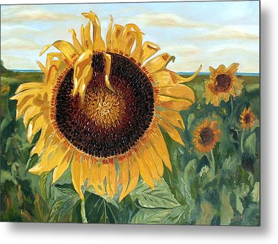Sunflower Fields Forever  Metal Print by Maria Soto Robbins