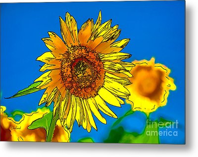 Sunflower In Line And Ink Metal Print