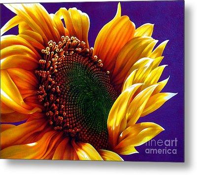 Sunflower Metal Print by Jurek Zamoyski
