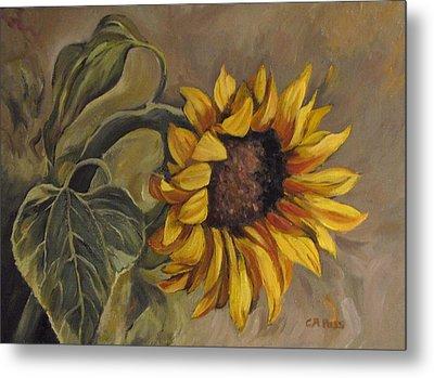 Sunflower Nod Metal Print by Cheryl Pass