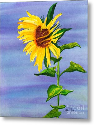 Sunflower Metal Print by Pauline Ross