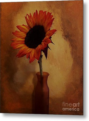 Sunflower Seed Maker Metal Print by Marsha Heiken