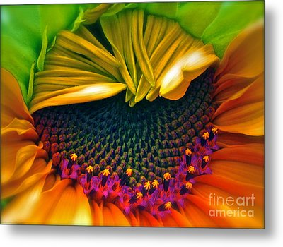 Sunflower Smoothie Metal Print by Gwyn Newcombe
