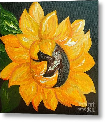 Sunflower Solo Metal Print by Eloise Schneider