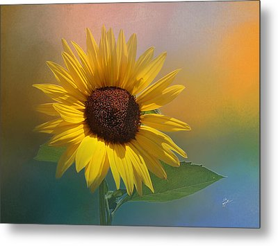 Sunflower Summer Metal Print by TK Goforth