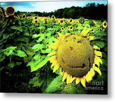 Sunflower With A Smiley Face Metal Print by Jennifer Craft