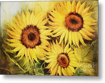 Sunflowers Metal Print by Fatima Stamato
