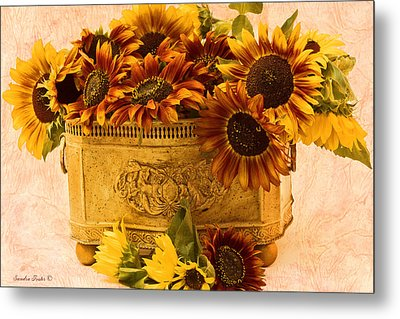 Sunflowers Galore Metal Print by Sandra Foster