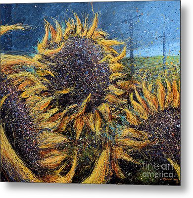 Sunflowers In Field Metal Print by Michael Glass