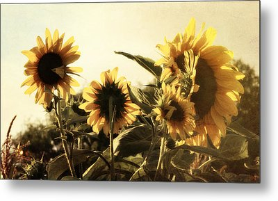 Metal Print featuring the photograph Sunflowers In Tone by Glenn McCarthy Art and Photography