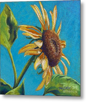 Sunflower's Shine Metal Print by Tracy L Teeter