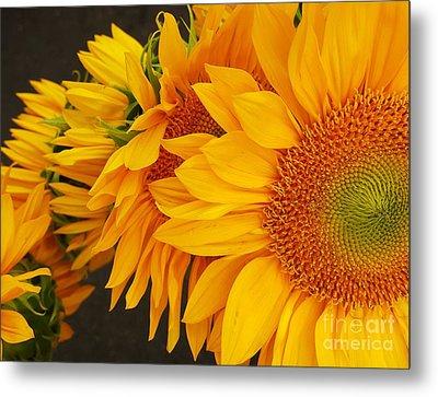 Sunflowers Train Metal Print