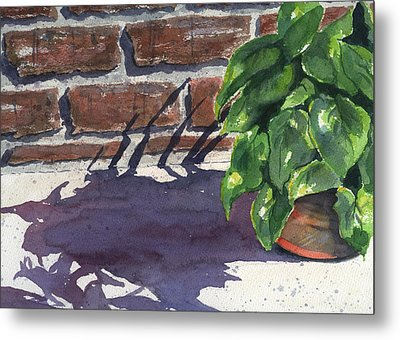 Sunlight And Shadows Metal Print by Marsha Elliott