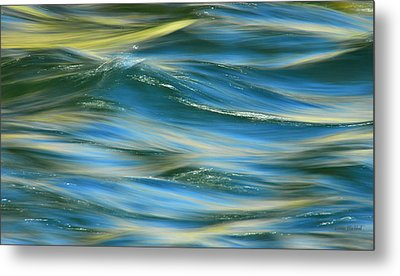 Sunlight Over The River Metal Print by Donna Blackhall