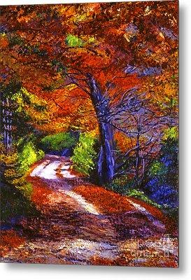Sunlight Through The Trees Metal Print by David Lloyd Glover