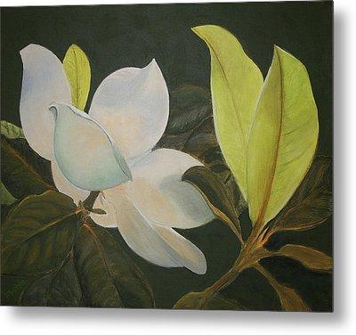 Sunlit Magnolia Metal Print
