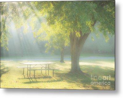 Sunlit Morning Metal Print by Tamyra Ayles