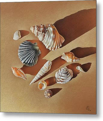 Metal Print featuring the drawing Sunlit Shells by Elena Kolotusha