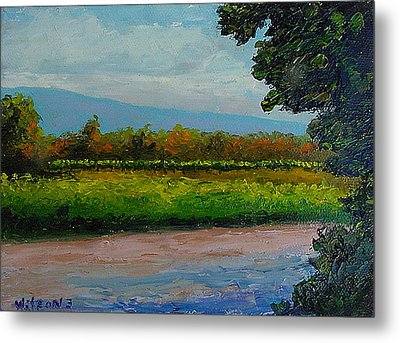 Metal Print featuring the painting Sunlit Vinyard by Fred Wilson