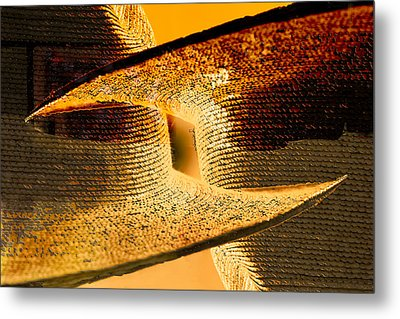 Sunlit Yellow Metal Print by Don Gradner